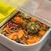 Miniaturzuchtbox The Hive für Mehlwürmer als Speiseinsekten