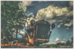 Bug Eyed (* Gemini-6 *) Tags: sky clouds trees grunge tractor international hdr rust patina wideangle lowangle ih internationalharvester art forgotten abandoned ihcub