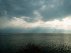 Lac Léman vom Zug aus (Daniel Philipona) Tags: genfer see lac léman zug train lake moody sun rays sonnenstrahlen wolken