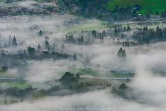 Spring Mist (Jaykhuang) Tags: lowfog mist springtime springgreen pleasanton sunolvalley trivalley eastbay bayarea pleasantonridge jayhuangphotography highway680