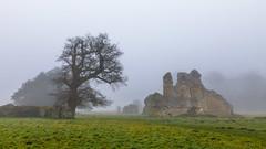 Waverley Abbey Ruins (THE NUTTY PHOTOGRAPHER) Tags: waverleyabbey mistymorning trees ruins grass