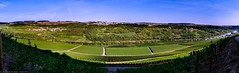 Wormeldange - Panoramic view of the Moselle valley (Robert GLOD (Bob)) Tags: donatus donatuskapell kapell koeppchen lu mosel moselle musel wormeldange wormeldingen wormer wuermeldeng wuermer wuermerkoeppchen creek europe grapes luxembourg panorama river stream vineyard köppchen