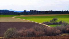 - mein Nachhauseweg - (HOR-BS 696) Tags: berndsontheimer badenwürttemberg blackforest schwarzwald forêtnoire