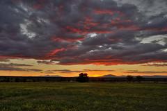 Fin de invierno (Aristides Díaz) Tags: paisaje landscape puestadesol sunrise nubescoloreadas cielonuboso pinkclouds altiplanodegranada afsnikkor1685gedvr granada andalucía