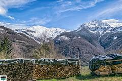 Depuis Les Salars, Aydius (64) (https://pays-basque.coline-buch.fr/) Tags: 2019 64 aquitaine avril aydus béarn colinebuch france daspe foret montagne nature paysage pyrénées pyrénéesatlantiques vallée