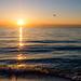 Point Pelee Sunrise