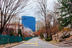 Seoul (stuckinseoul) Tags: fujifilmx100s asian 한국 seoul asia 서울 대한민국 x100s southkorea city photo korean korea fujifilm seoulhistorymuseum kr