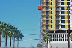 Urban Renewal (MPnormaleye) Tags: palms southwest design helios urban