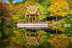 30375240572_7b8c1da426_o (stacheltierchen) Tags: autumn munich westpark pagode reflection bunt amazing color trees herbst germany nikon d3300 flickr travel landscape europe explore bavaria