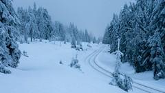unterwegs (Foto-Wandern.com) Tags: schnee deutschland frost winter harz nationalparkharz germany tourismus snow tourism brocken goetheweg fotowandern fotowanderncom sony rx100m6