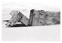 Fallen (2019) (phamnes) Tags: norway accidentallystarwars slr 35mm 135film filmphotography ishootfilm grain winter xtol fomapan400 foma fomapan sweet50 composerproii lensbabycomposerproii lensbaby coolscanv nikonf5 nikon