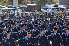 (thcarvalh0) Tags: eb fab marinha aeronautica exercito 7 de setembro anhembi desfile independencia brasil sp 2015