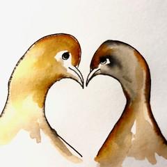 B178-365 one bird a day - Lovebirds - a quick sketch (www.doortje.nl) Tags: vogel pájaro uccello passarinho طائر oiseau птица birdo voël 鸟 doortjenl 1tekeningperdagnl pen ink lamy fountainpen black white