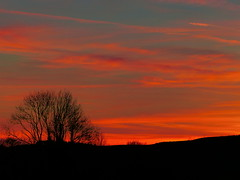 A Fiery Valentine's Sunset (CarenPolarBears) Tags: sunsetinwales valentinesday