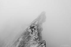 Portjengrat Mono Version N°1 (Bernhard_Thum) Tags: bernhardthum thum alpen alpi alps portjengrat wallis schweiz switzerland saastal climbing mountains alpinismus alpinism alpinismo sonyrx100ii pizzodandolla blackandwhite