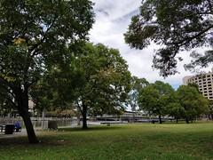 Batman Park on the banks of the Yarra River, Melbourne (avlxyz) Tags: melbourne victoria australia batmanpark yarrariver river