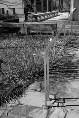 Arboretum in winter: courtyard, National Bonsai and Penjing Museum, US National Arboretum, Washington, DC (jmlwinder) Tags: inwinter nationalbonsaiandpenjingmuseum usnatonalarboretum blackandwhiite bnw monochrome