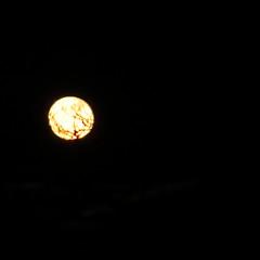 Full Moon,Aberdeen_Feb 19_779 (Alan Longmuir.) Tags: misc sky grampian aberdeen moon fullmoon night