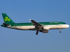 Aer Lingus | Airbus A320-214 | EI-DEG (Bradley's Aviation Photography) Tags: egll lhr heathrow londonheathrowairport heathrowairport canon70d london aviation avgeek aviationphotography plane planespotting flying aerlingus airbusa320214 eideg a320