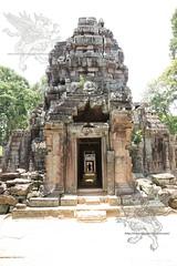Angkor_Ta_Som_2014_15