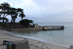 IMG_9757 (mudsharkalex) Tags: california pacificgrove pacificgroveca loverspointpark loverspointbeach beach