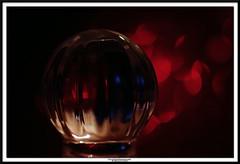 fragile (NadzNidzPhotography) Tags: nadznidzphotography macromondays redux2018 glass bokeh fragile red