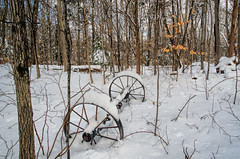 Winter's Wagon Wheels (Bob Gundersen) Tags: bobgundersen gundersen robertgundersen guilford ct conn connecticut country connecticutscenes tree forest cold winter white snow snowy wheel outside outdoor exterior yard home frozen countryside flickr nikon nikoncamera nikond600 d600 camera photo ice icy scenes scene landscape day