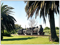 7A 1007 & 7B 1056 at Knysna, South Africa. (johncheckley) Tags: railway locomotives palmtrees southafrica steam