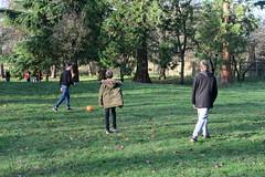 (Andrew Gallix) Tags: william yearfourteen brendan alfie bushypark london football