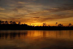 ...golden sunset (Jim Atkins Sr) Tags: sunset cloudsstormssunsetssunrises spectacularsunsetsandsunrises northcarolina northwestcreek fairfieldharbour sony sonya58 sonyphotographing
