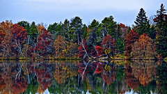 Autumn at the Lake (Bob's Digital Eye 2) Tags: autumn autumncolour bobsdigitaleye bobsdigitaleye2 canon canonefs55250mmf456isstm fall flicker flickr lake lakescape landscape nature outdoor reflections seasons t3i trees