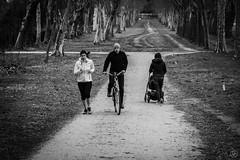 Walk (damiencorrephoto) Tags: bnw noiretblanc blackandwhite black white noir blanc rue street