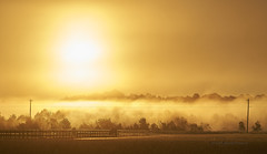Morning Glow (Valley Imagery) Tags: golden fog mist morning winter cold fence road sony a99ii