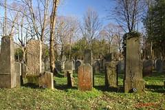 IMG_8291 (Pfluegl) Tags: wien vienna zentralfriedhof graveyard europe eu europa österreich austria chpfluegl chpflügl christian pflügl pfluegl spring frühling simmering