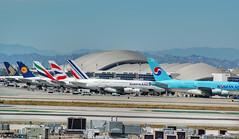 LOS ANGELES LAX (Adrian.Kissane) Tags: lax a380 britishaw airfrance lufthansa singapore korean emirates