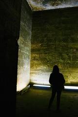IMG_E0395 (Peter Chou Kee Liu) Tags: 2019 02 egypt west bank nile temples