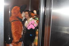 IMG_8979 (South Kitsune) Tags: fursuit furries furcon costumes cosplays caliur furry fandom