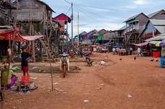Kampong Khleang (Kelly Renée) Tags: cambodia kampongkhleang seasia southeastasia tonlesap chickens dailylife dryseason houses people village kampongkhleangfloatingvillage siemreapprovince kh