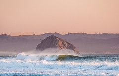 Searching Fletcher-25 (D.P. Kuras) Tags: surfing cayucos surfer wave thanksgiving centralcoast family lifestyle surf life