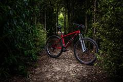 4 of 52 Weeks (Lyndon (NZ)) Tags: week42019 startingtuesdayjanuary222019 52weeksthe2019edition bike cycle bicycle ilce7m2 sony newzealand nature outdoors