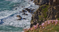 Cornwall, United Kingdom (tomst.photography) Tags: cornwall unitedkingdom uk greatbritain british nature shore cliff sea ocean waves crushingwaves hiking greenisland seaside oceanside texture tomst