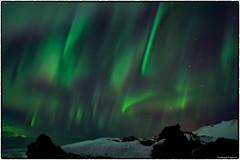Curtains (RKop) Tags: aurora auroraborealis iceland raphaelkopanphotography d500 nikkor24mmf28