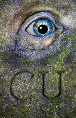 CU (Bradverts) Tags: eye green closeup head organ stonecarving art iris snout abstract old pattern nature stone design vertical lancaster england europe northerneurope britishculture textured uk