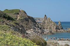 Caldi colori dell'estate - Warm colours of the summer (ricsen) Tags: italia italy sardegna sardinia spiaggia beach sabbia sand naturale natural naturalistico naturalistic