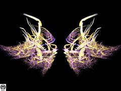 069_00-Apo7x-190218-6 (nurax) Tags: fantasia frattali fractals fantasy photoshop mandala maschera mask masque maschere masks masques simmetria simmetrico symétrie symétrique symmetrical symmetry spirale spiral speculare apophysis7x apophysis209 sfondonero blackbackground fondnoir