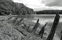 Les rives du Blavet (Yvan LEMEUR) Tags: blavet epave morbihan bretagne rivière rivage rivages extérieur lorient nature nb noiretblanc bw blackandwhite