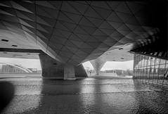 L2990321 (RG-Photographie) Tags: analog argentique film leica leicam2 lyon rollei rpx100 21mm voigtlander colorskopar21mm colorskopar architecture skate streetphotography