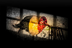 Caught in a cage (St James Gate) Tags: bird cage streetart art urbex belgium belgiumflag abandoned tag graffiti