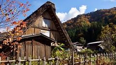Japan - Shirakawa-go (janvandijk01) Tags: japanese japon japan shirakawago farm boerderijen boerderij rieten dak