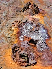 Rostiges Eisen auf Fraser Island (Sanseira) Tags: australien australia queensland fraser island eisen rost wrack